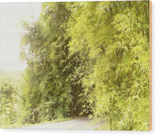 bambu en Limani, Adjuntas Wood Print