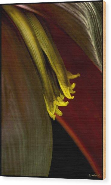 Banana Blossom Wood Print by Daniel G Walczyk