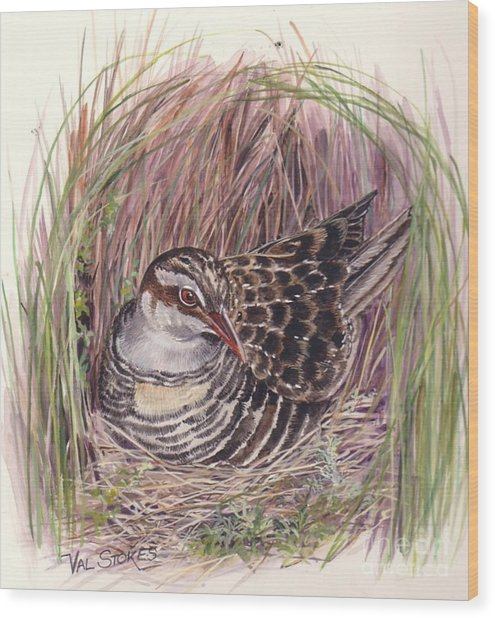 Banded Rail Wood Print by Val Stokes