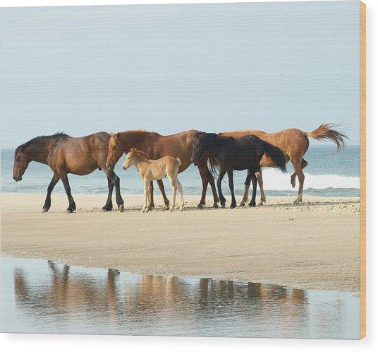 Banker Horses - 1 Wood Print
