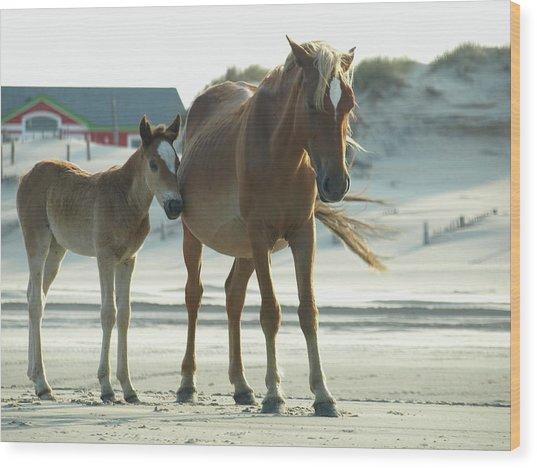 Banker Horses - 3 Wood Print