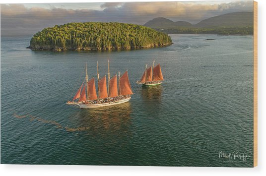 Sailing Thru Life The Downeast Way Wood Print