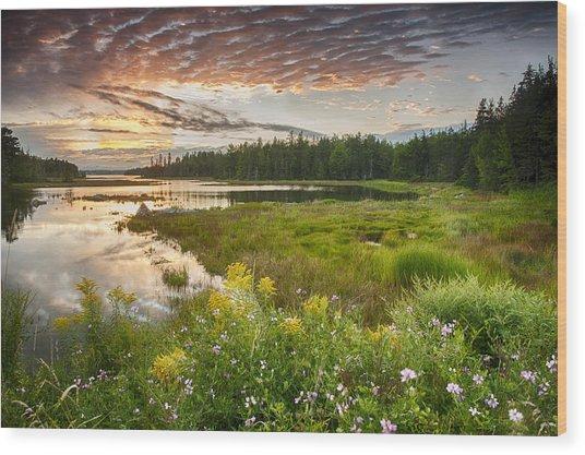 Bar Harbor Maine Sunset One Wood Print