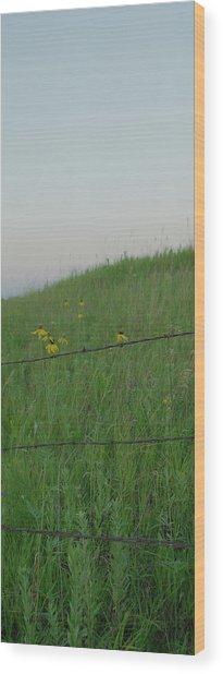 Barb Wire Prairie Wood Print