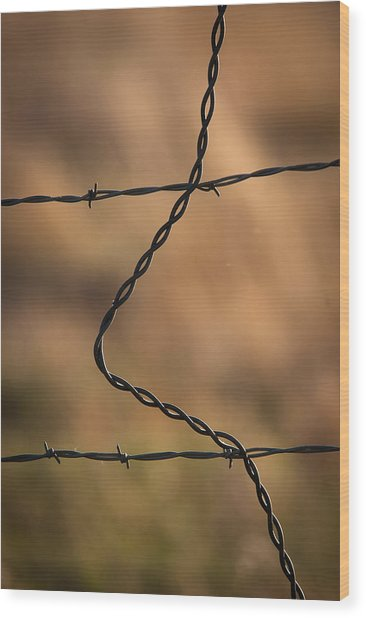 Barbed And Bent Fence Wood Print
