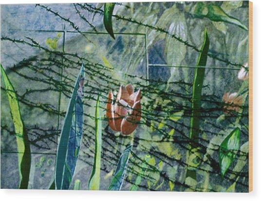 Barbed Vine Wood Print by Nancy  Ethiel