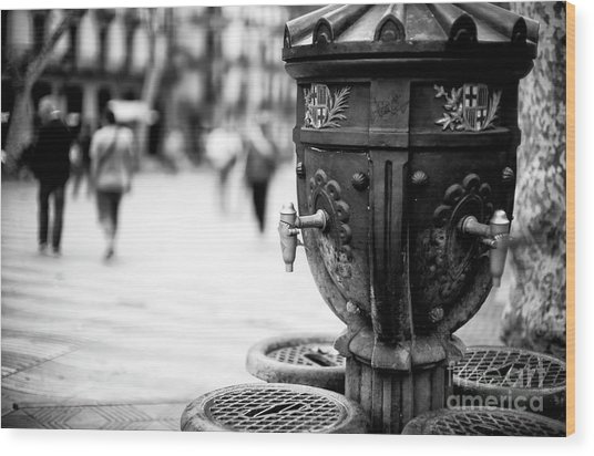 Barcelona Drinking Fountain Wood Print by John Rizzuto