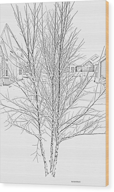 Bare Naked Tree Wood Print