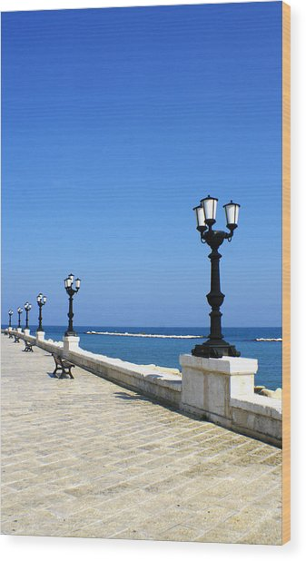 Bari Waterfront Wood Print