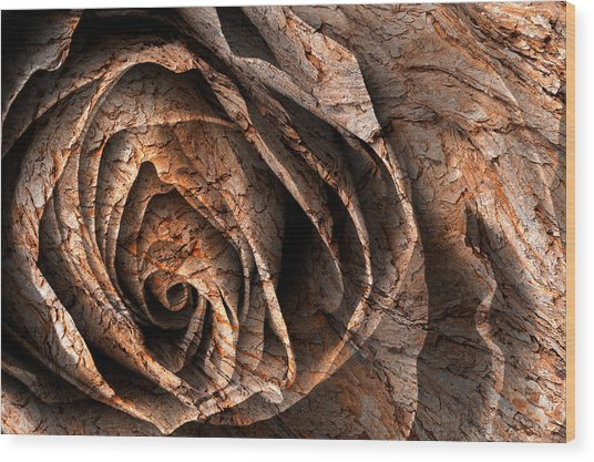 Barking Rose Wood Print