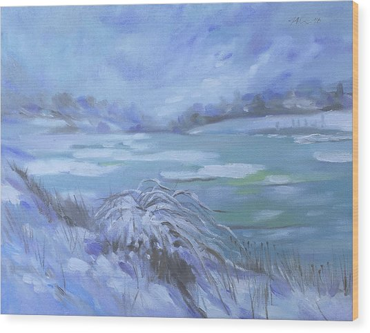 Barlow Pond Snowscapr Wood Print