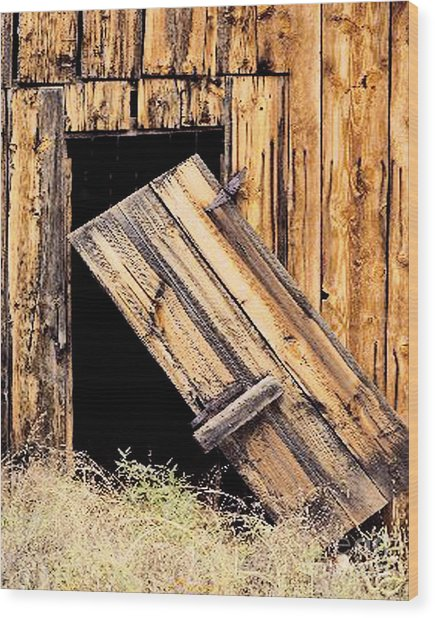 Barn Door Broken Hinges Wood Print by Merton Allen & Barn Door Broken Hinges Photograph by Merton Allen