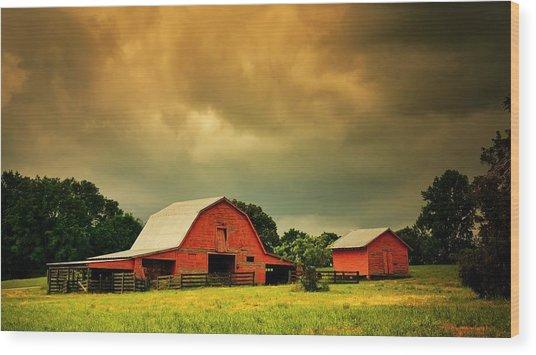 Barn In The Usa, South Carolina Wood Print