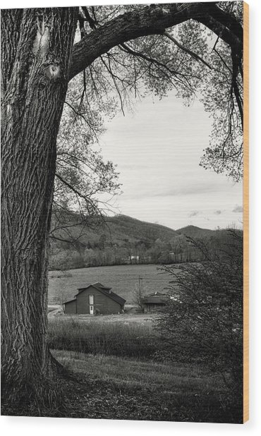Barn In The Valley In Black And White Wood Print