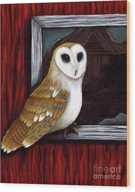 Barn Owl Beauty Wood Print
