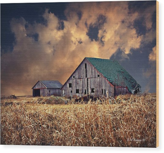 Barn Surrounded With Beauty Wood Print