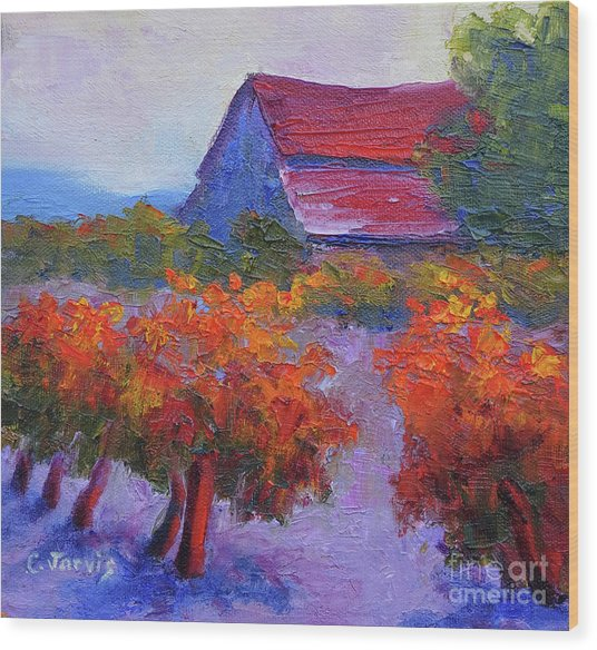 Barn Vineyard Autumn Wood Print
