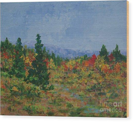Barnardsville Branch Wood Print