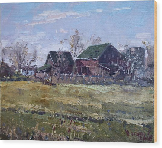 Barns In Niagara County Wood Print