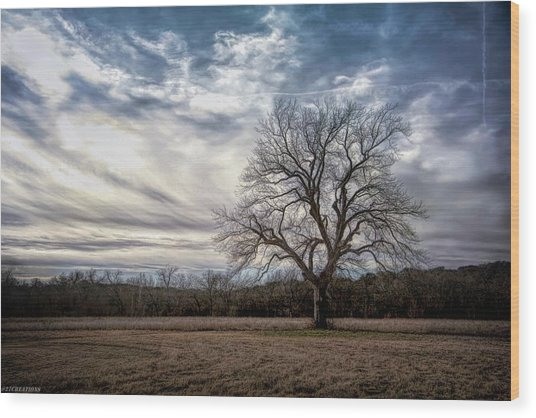 Baron Tree Of Winter Wood Print