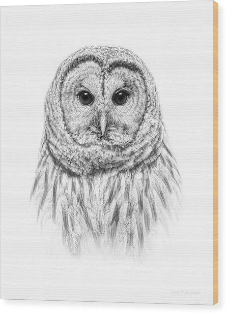 Barred Owl Portrait Black And White Wood Print