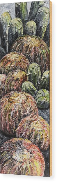 Barrel Cactus #1 Wood Print