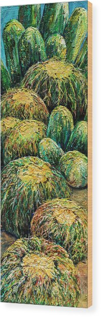 Barrel Cactus #2 Wood Print