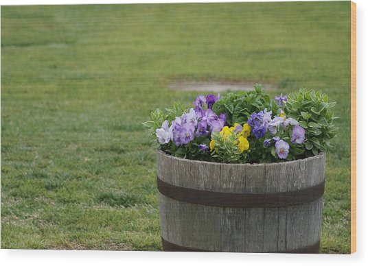 Barrel Of Flowers Wood Print