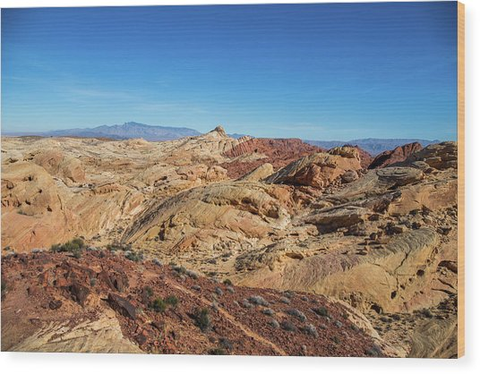 Barren Desert Wood Print