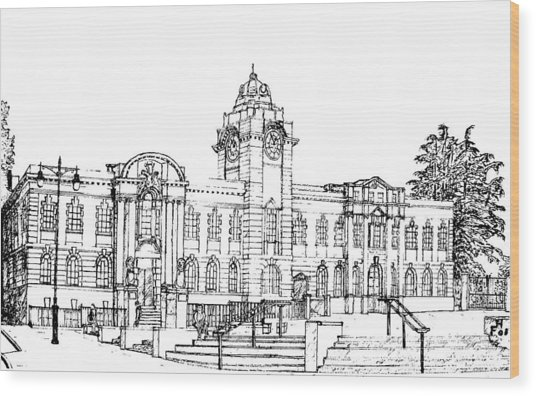 Barry Town Hall And Library Wood Print