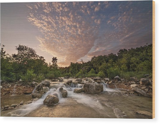Barton Creek Greenbelt At Sunset Wood Print