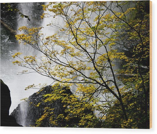 Base Of The Falls. Wood Print