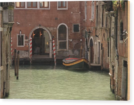 Basin In Venice Wood Print by Michael Henderson