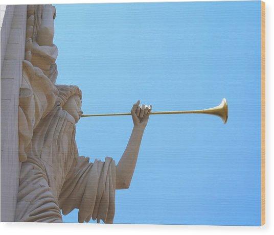 Bass Angel Wood Print