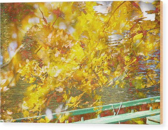 Bassano Wood Print by Mary Mansey