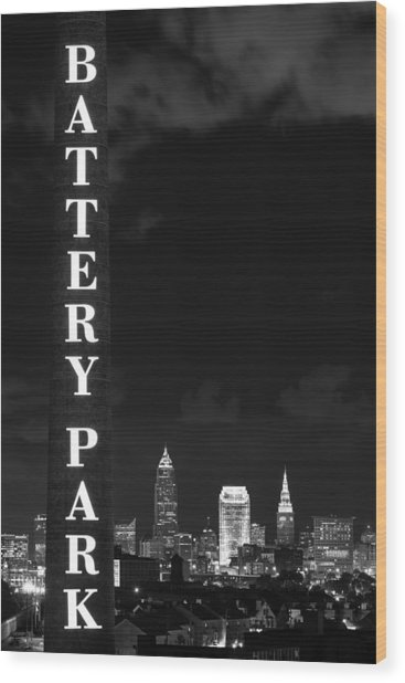 Battery Park Cleveland Skyline Wood Print
