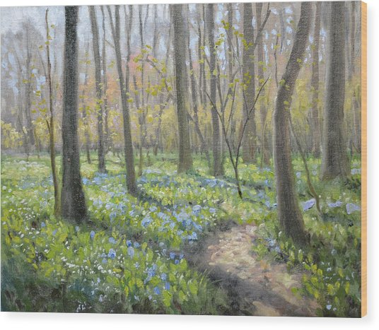 Battlefield Bluebells Wood Print