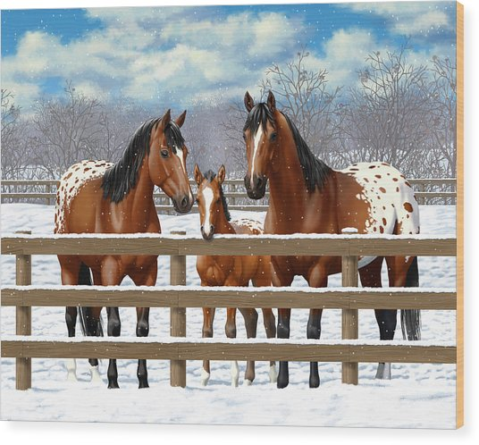 Bay Appaloosa Horses In Snow Wood Print by Crista Forest
