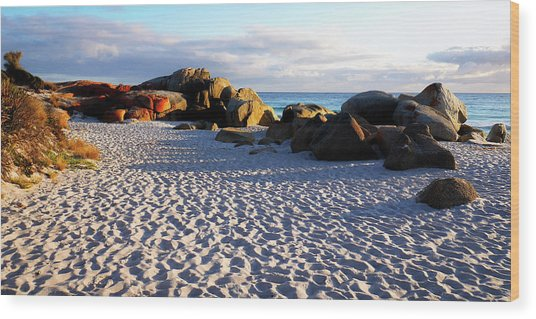 Bay Of Fires Sunrise Wood Print