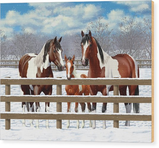 Bay Paint Horses In Snow Wood Print by Crista Forest