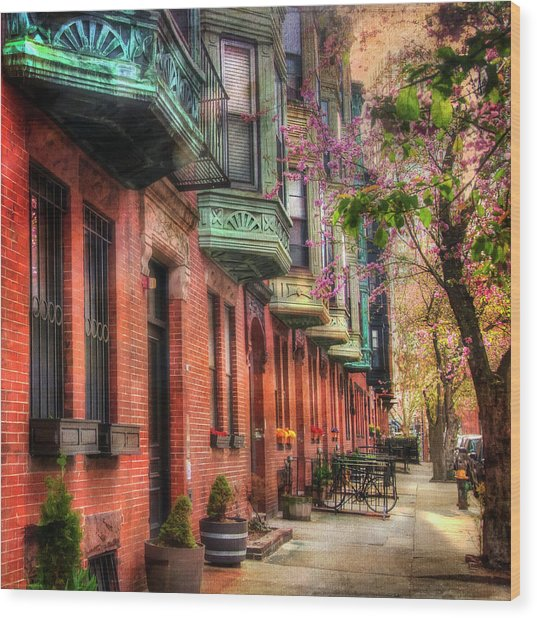Bay Village Brownstones And Cherry Blossoms - Boston Wood Print