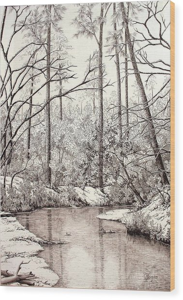 Bayou Lacombe At Peace Grove Ll Wood Print by Colleen Marquis