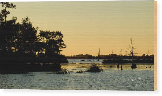 Bayou Sunset Venice Louisiana Wood Print