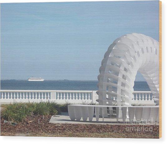 Bayshore Boulevard Sculpture Wood Print