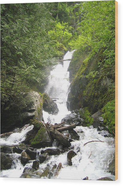 Bc Mountain Stream Wood Print by Reb Frost