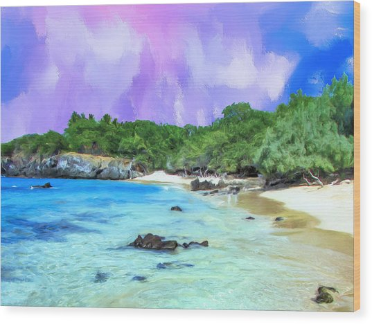 Beach 69 Big Island Wood Print