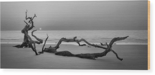 Beach Art Cropped In Black An White Wood Print by Greg Mimbs