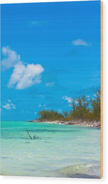 Beach At North Bimini Wood Print