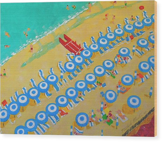 Beach At Sorrento Wood Print