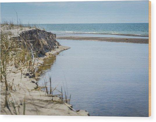 Beach At Warren Dunes Wood Print